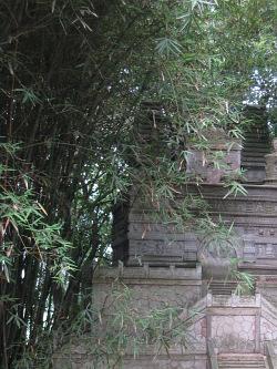 bambus-mit-pagode
