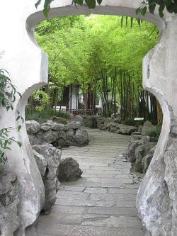 bambus im garten | bambus, alles zur pflanze bambus und zur, Garten und erstellen